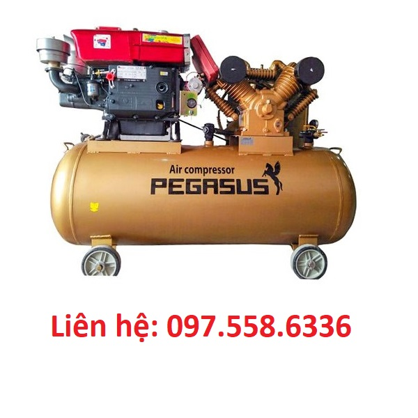 Máy nén khí chạy dầu diesel Pegasus TM-W-2.0/8-500L