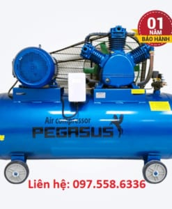 May-nen-khi-Pegasus-TM-W-1.08-500L-10Hp
