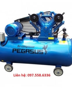 may-nen-khi-day-dai-pegasus-tm-v-1-05-12-5-500l-10hp-380v (3)